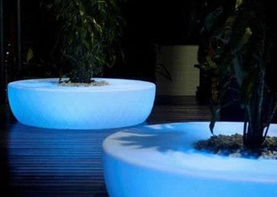 decoration-exterieure-eclairage-vegetale