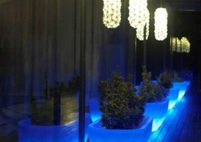 decoration-vegetale-eclairage