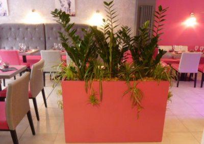 decoration-vegetale-bacs-vegetaux-calvados-14